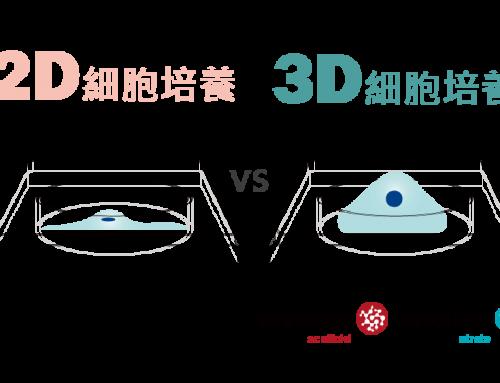 2D培養和3D培養差異比較–3D細胞培養模擬人體環境