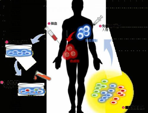 世翔與您一同開發細胞免疫治療法